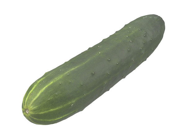 photorealistic scanned cucumber model