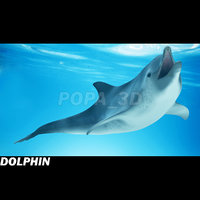dolphin envirenment max