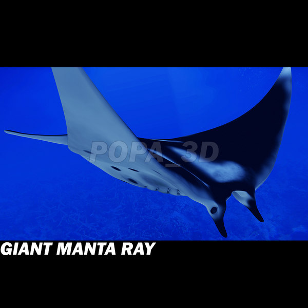 3ds manta giant