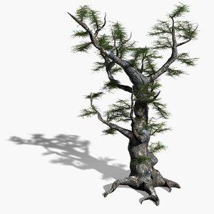 max scanline ash tree