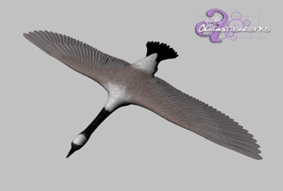 3d canadian goose model