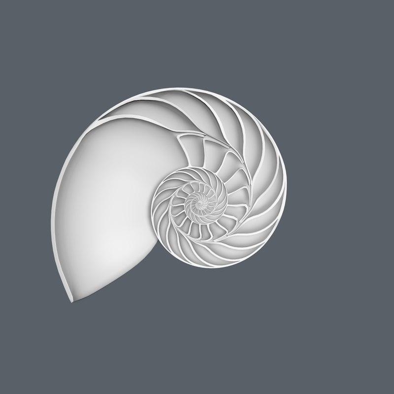 3d nautilus shell cut