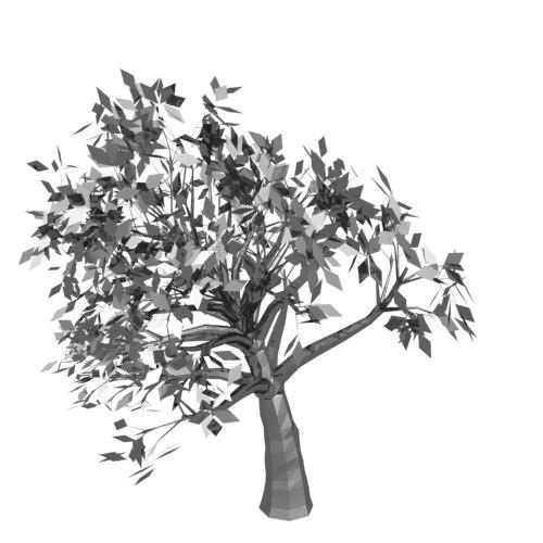 tree wind 3d model