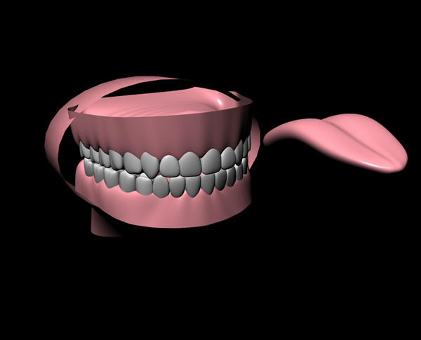 teeth originally created 3d c4d