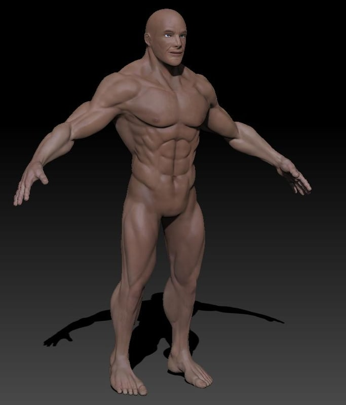 from Henry free 3d gay models