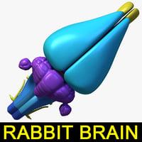Rabbit Brain