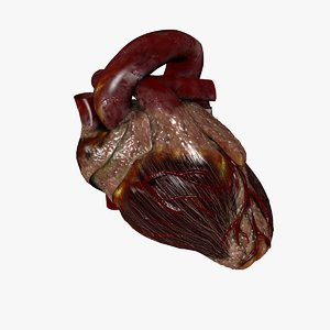 cinema4d heart beating