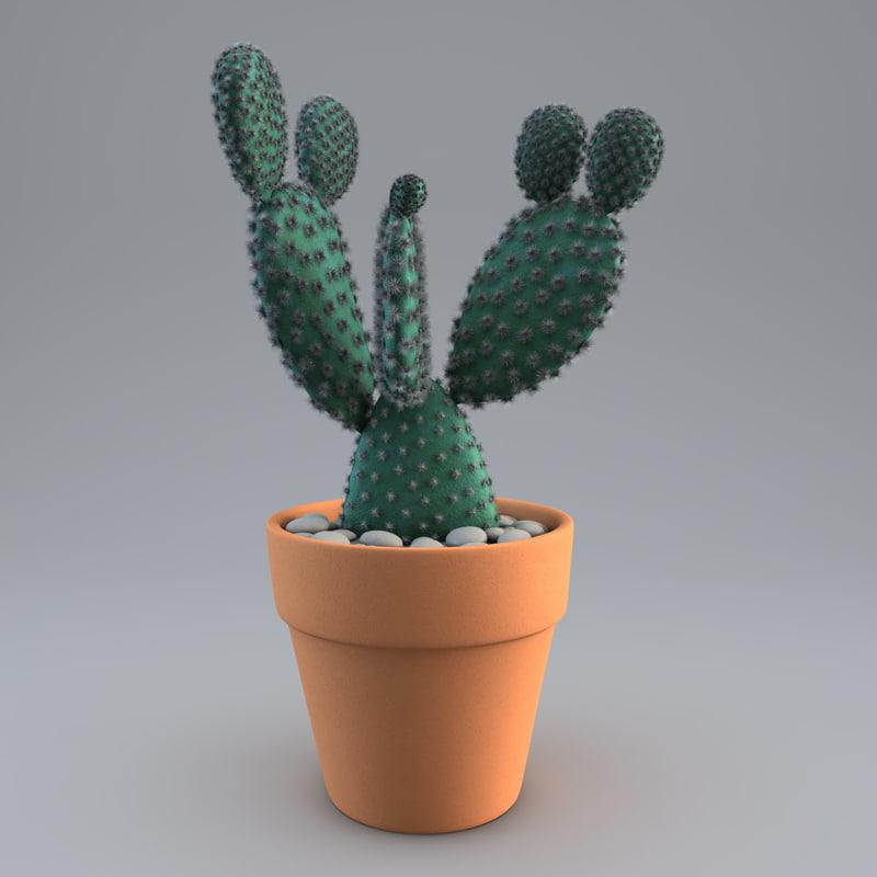 cactus plant 2 max
