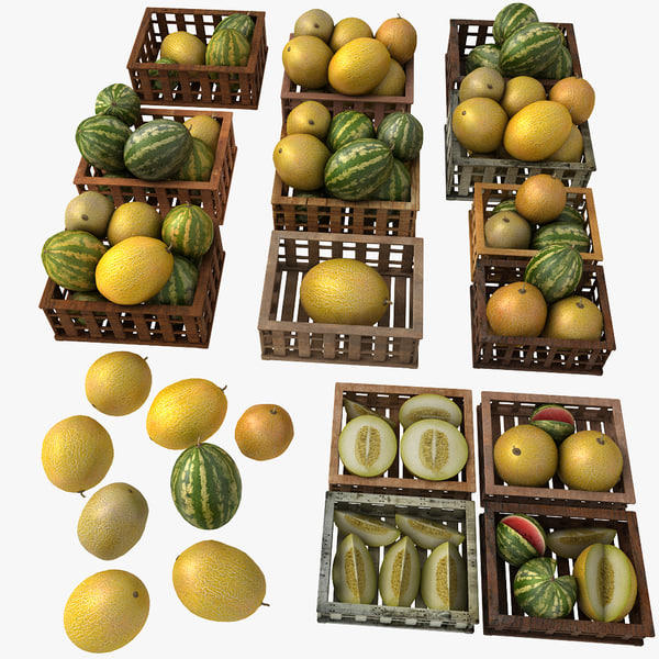 White Melon Fruit Crates Cases Market Store Shop Convenience General Grocery Greengrocery Detail Prop Fair Plantation Jungle South Plant Garden Greenhouse (2)