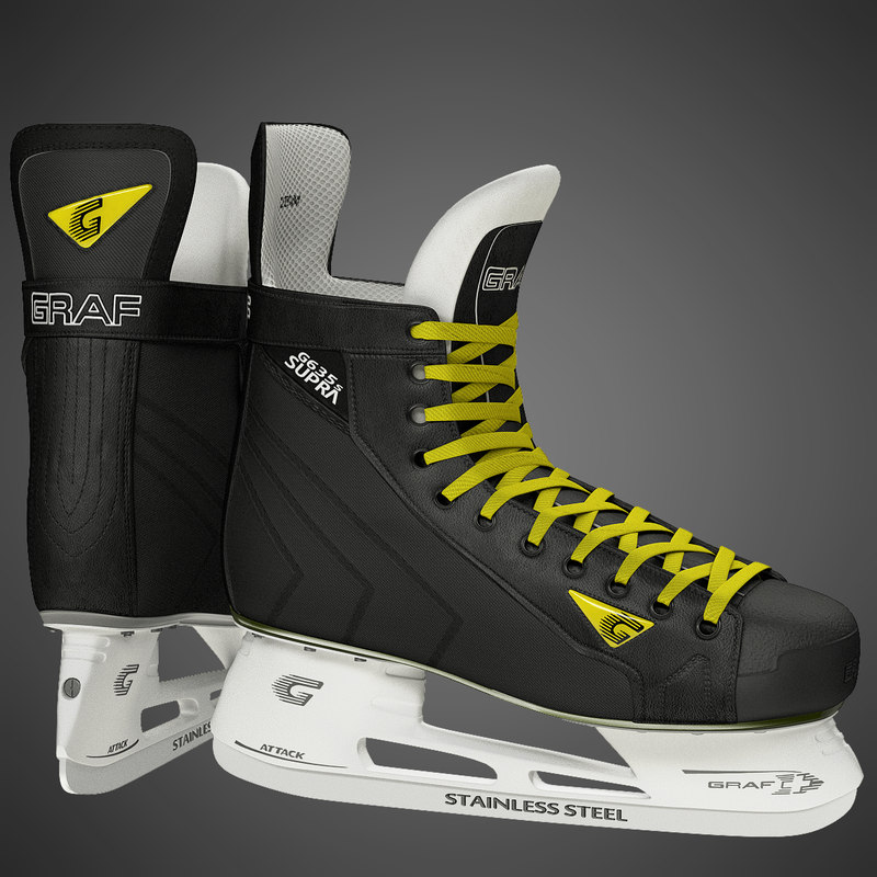 3d model ice hockey