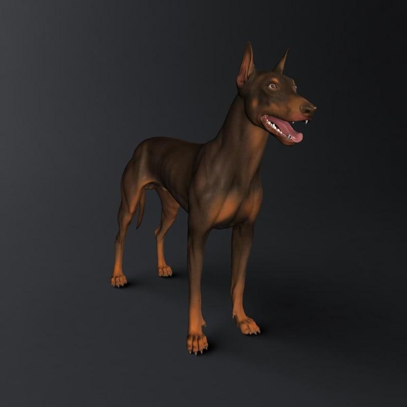 3d model doberman dog