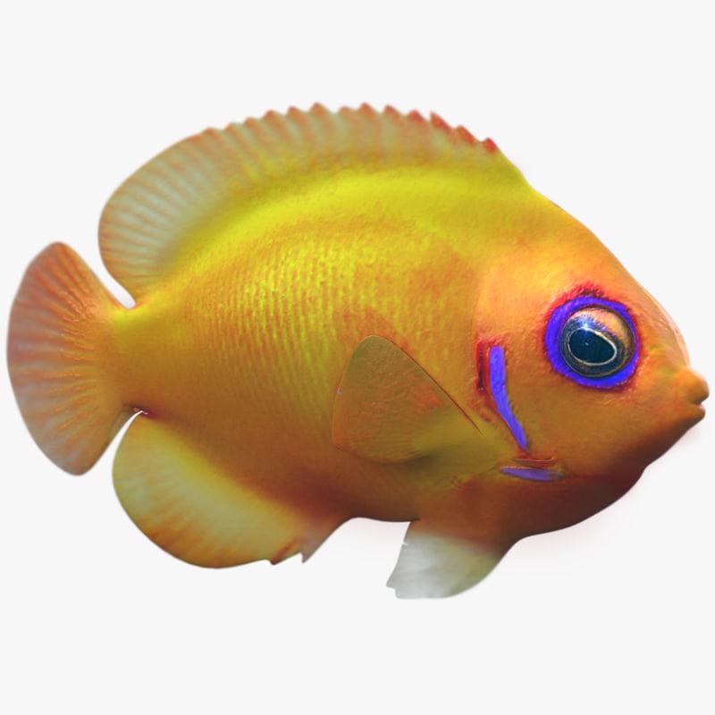 lemon tropical fish 3d max