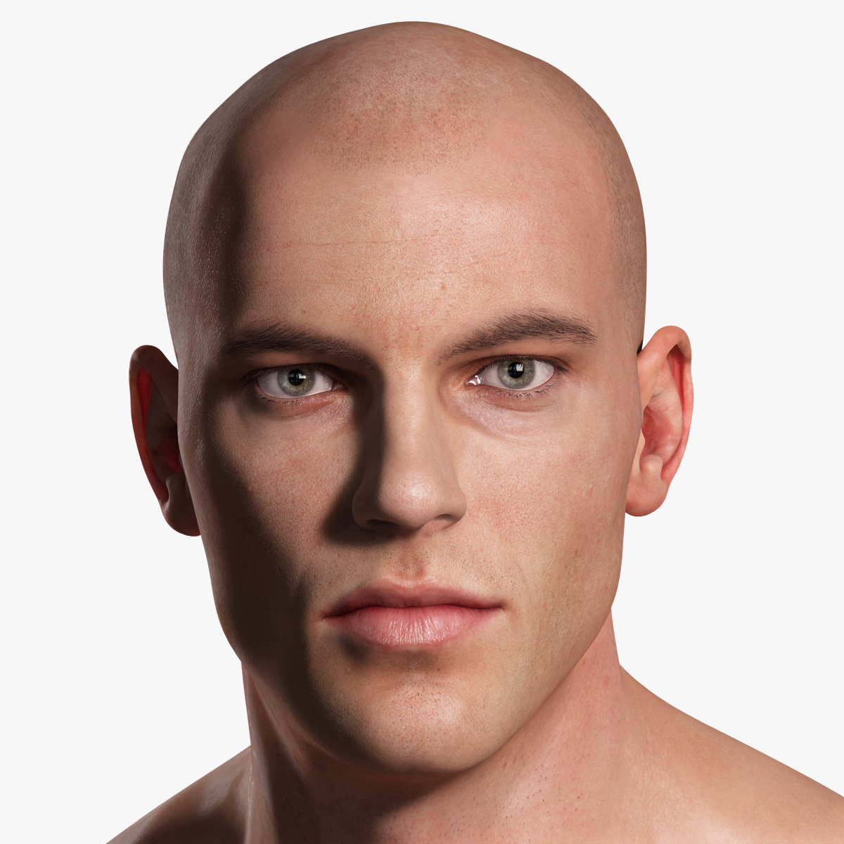 realistic male body - max