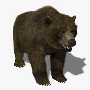 3d model bear fur