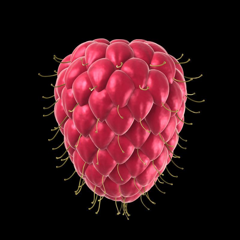 raspberry ruit