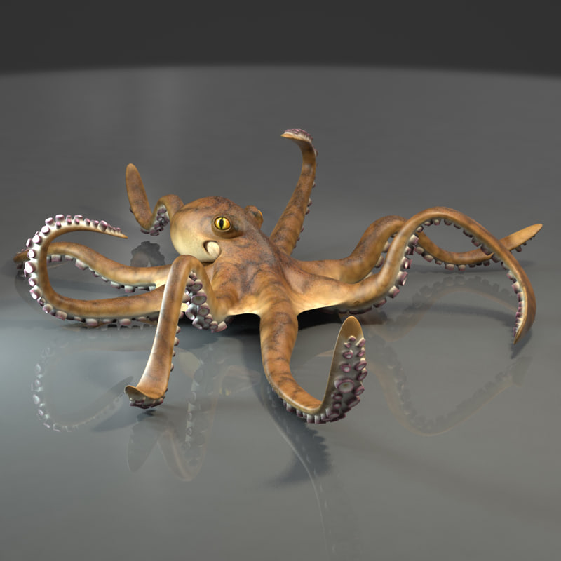 rigged giant pacific octopus 3d model