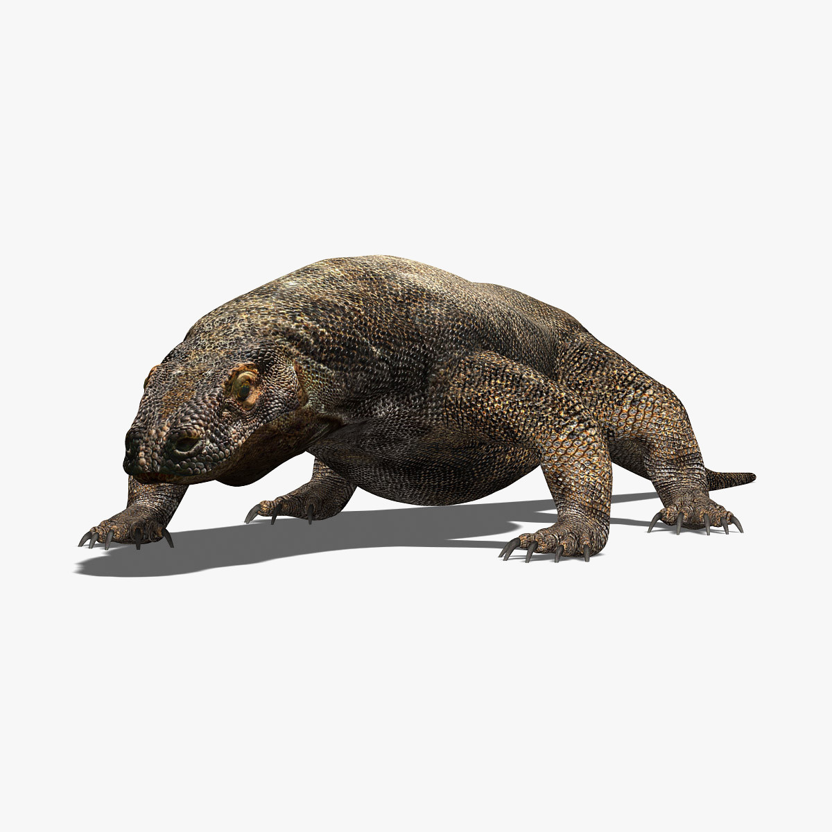 photorealistic komodo dragon 3d model