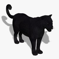 Black Panther (FUR)