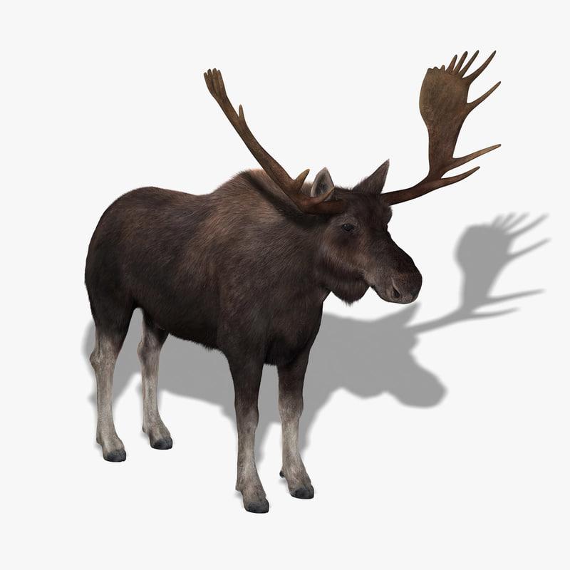 3ds max moose fur