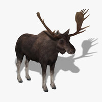 3ds max moose fur