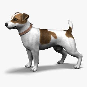 jack l terrier fur 3d model