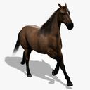 Quarter Horse 3D models