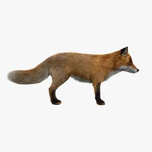 red fox fur 3d model