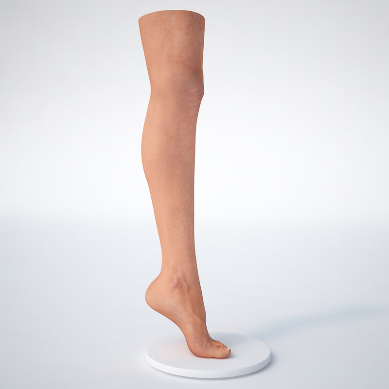 - female leg foot 3d model