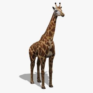 photorealistic giraffe fur 3d obj