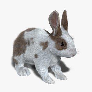 rabbit spotted fur 3d obj