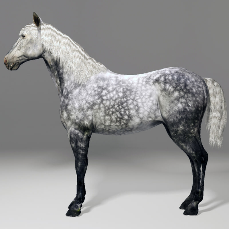 horse animal obj