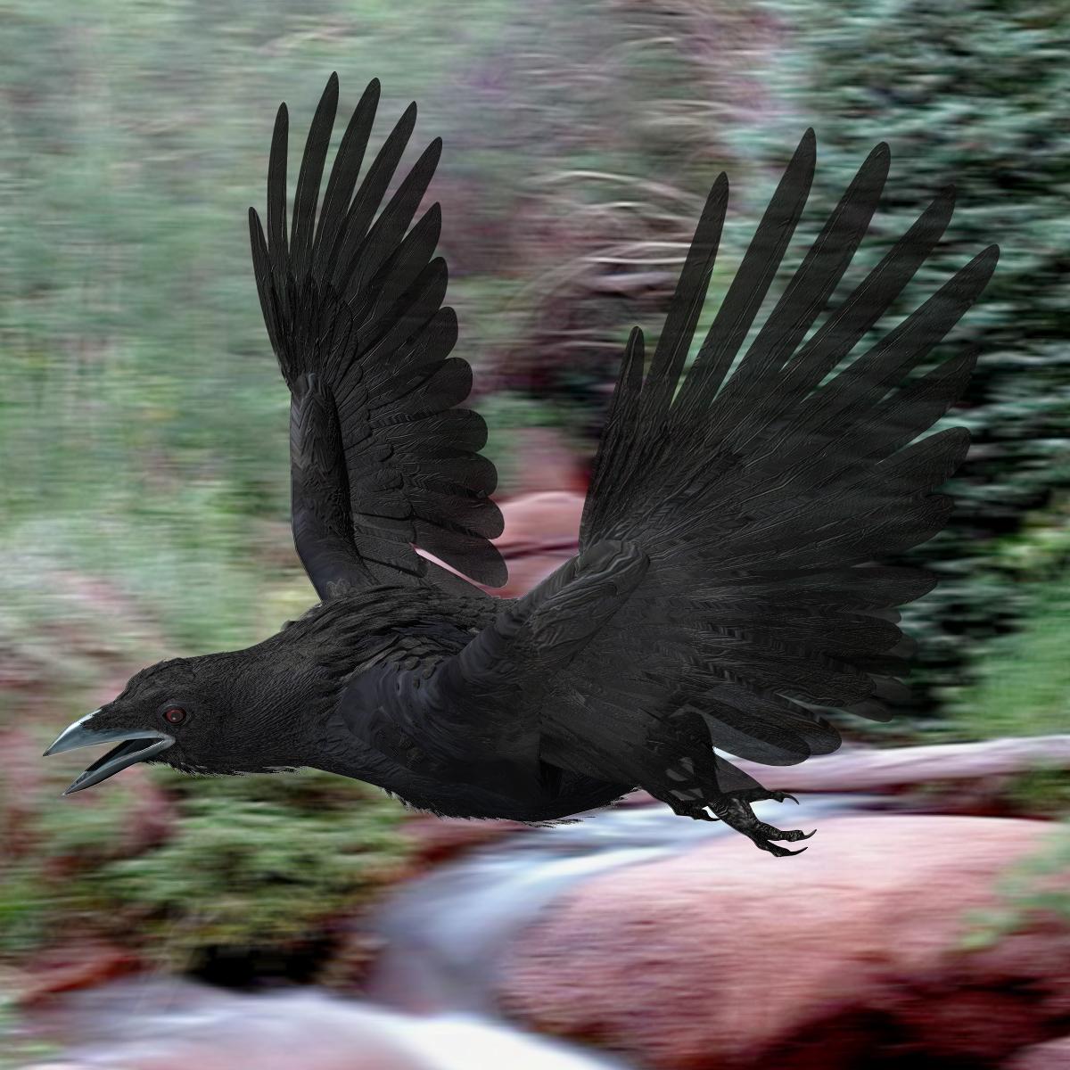 crow rigged lightwave 3d model