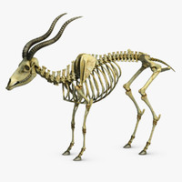 goat skeleton 2 3ds