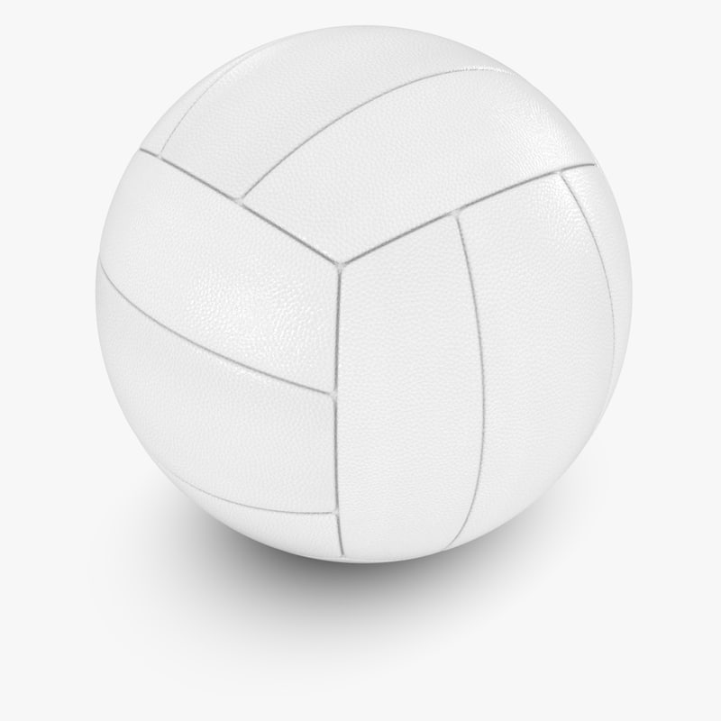 leather volleyball 3d model