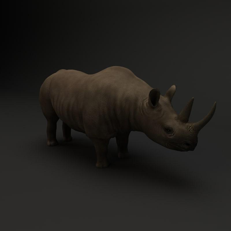 rhino rhinoceros 3d model