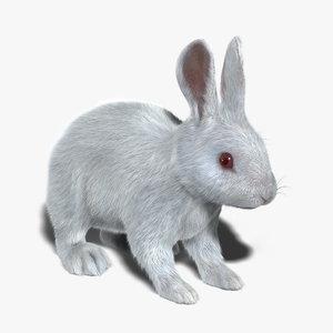 obj rabbit white fur