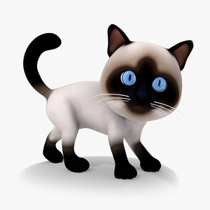 3d cat cartoon rigged