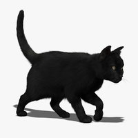 Cat (Black) (FUR) (ANIMATED)