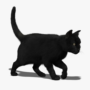 3d ma cat black fur animations