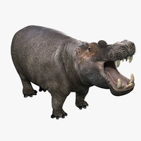 3dsmax photorealistic hippopotamus