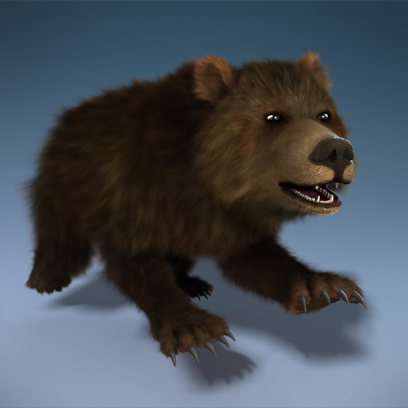 bear rigged - 3d model