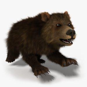 bear rigged - 3d model