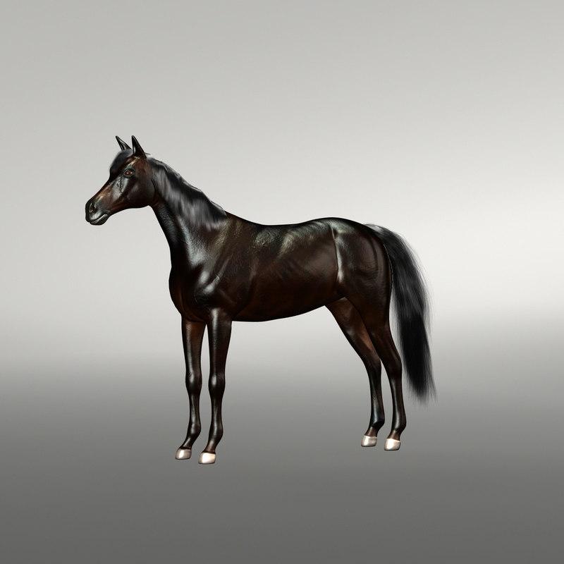 black horse 3d max