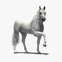 Rigged and Animated Horse