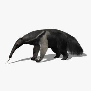 giant anteater obj