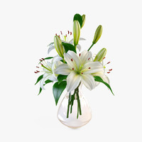 Lily in Vase 4