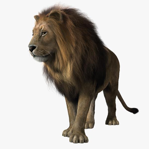 lion rigged fur 3d model