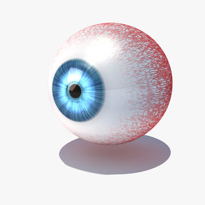 3d model of human eye animate -