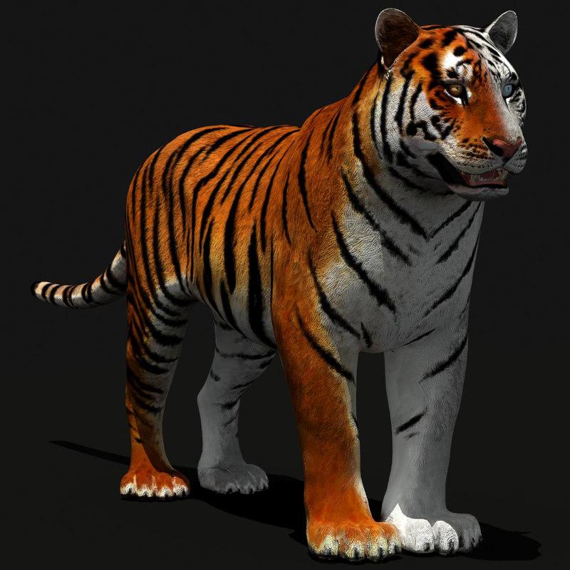 tiger white natural max