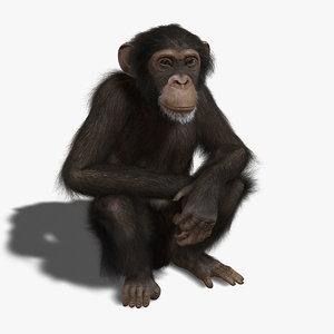 maya chimp rigged fur
